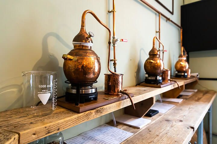 Gin Making Experience for One at Gyre and Gimble
