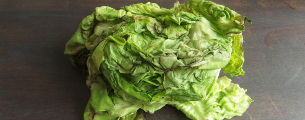 Gib schlappem Salat eine zweite Chance!