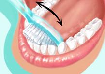 Médecine Dentaire : Dr LO, Dr LAM et Dr NIANE, M. OULD Eleya