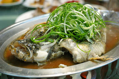 LIVE 'SOON HOCK' MARBLE GOBY 笋壳鱼