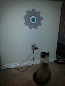 A shaded brown and black cat peers up warily at a DIY robotic eye