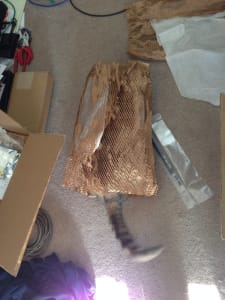 A blurry cat's tail pokes out from a roll of packing material