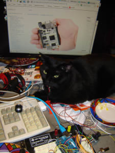 black cat sitting on top of work station in front of a computer screen with developmental board and multiple wires next to cat