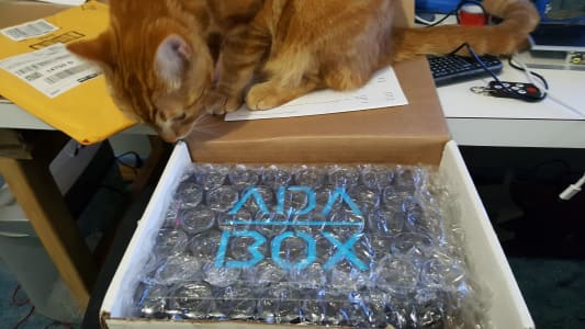 A curious orange tabby perched on an open AdaBox, sniffing at the contents