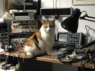 A calico cat sitting on a workstation with many eletronic tools