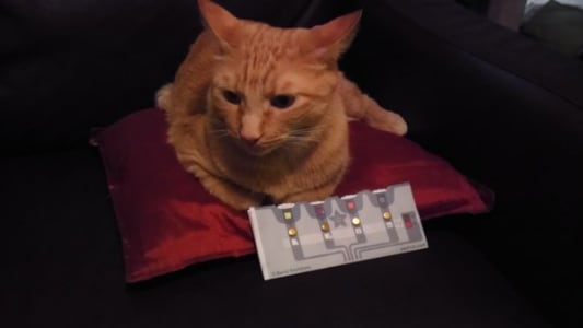 A little orange tabby lies on a shiny red pillow, their paws near an Adafruit Ohm calculations sheet