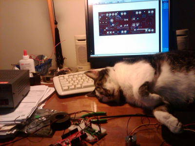 A cat is asleep on a desk with a keyboard, monitor and breadboard project.