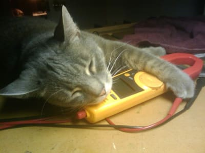 A sleeping grey cat lovingly cradles a multimeter