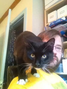 A black cat with white socks perched on the shoulder of bearded man, looking at the camera