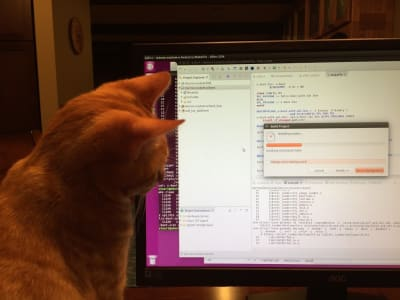 A cat sits next to an LCD monitor, watching a window on screen. The cat is a short-haired orange tabby. The window shows a progress bar for a C/C++ compiler.