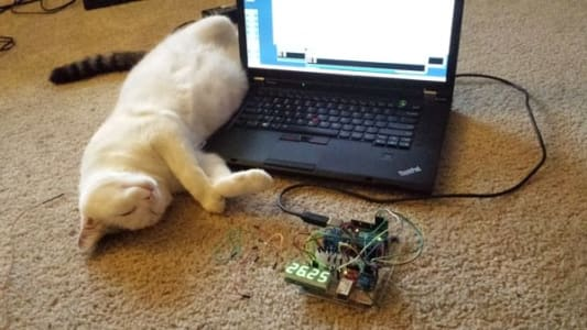 A playful white cat on its back by a laptop, its paws near a breadboard covered with wires and a segmented display