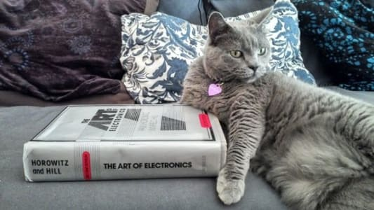 A grey cat on a grey couch reclines against a big hardcover book: The Art of Electronics by Horowitz and Hill