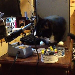 Black and white cat sits on top of computer keyboard, looking at a nearby microphone