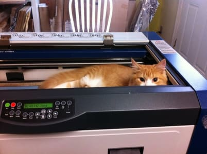 cat peeking out from laser engraver.