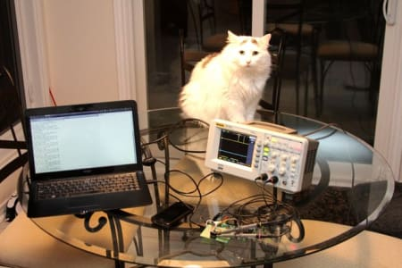fluffly cat sitting on glass table behind an oscilloscope and laptop.
