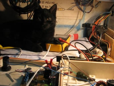 cat next to multimeter on lamplit desk supervising project.