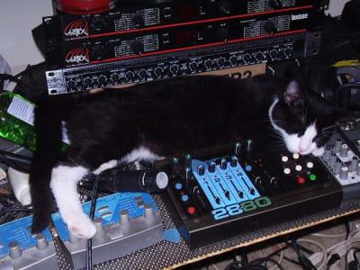 cat fast asleep atop of various mixers and audio interfaces.