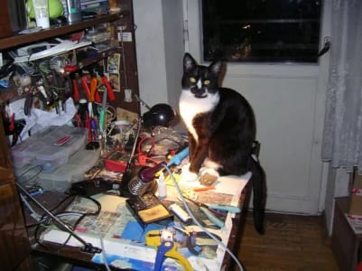 cat sitting on the edge of an in-use desk next to a soldering iron stand.