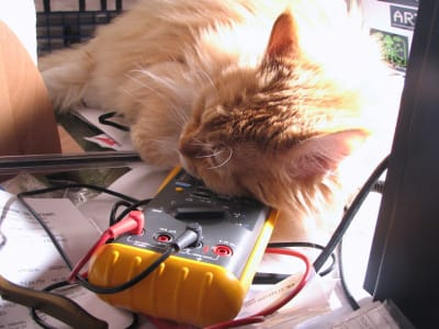 A long haired orange cat rests its head on a multimeter.