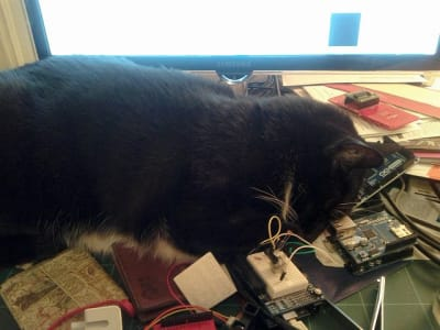 A dark grey cat sleeps on a desk surrounded by electronics project components.