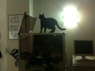 black cat sitting on top of pick and place machine