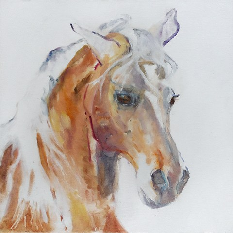 Portrait painting of a brown horse by Grazyna Adamska Jarecka