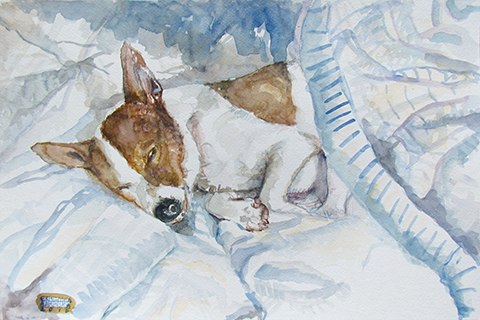 Painting of a brown dog sleeping by Grazyna Adamska Jarecka