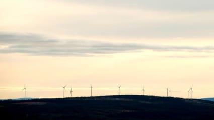 Kvällshimmel över skogslandskap, med vindkraftverk längst i bakgrunden.