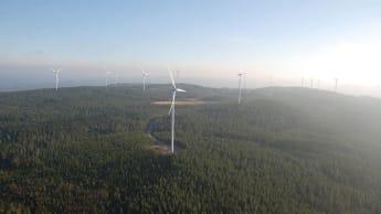 Flygfoto över en vindkraftspark bland skog, med havet i bakgrunden.