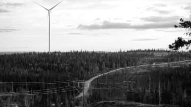 Svartvit bild på ett skogsparti där ett vindkraftverk tornar sig till vänster, med en mindre väg och elkraftledningar åt höger.