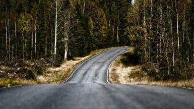 En smal väg guppar och svänger åt vänster bland tät barrskog.