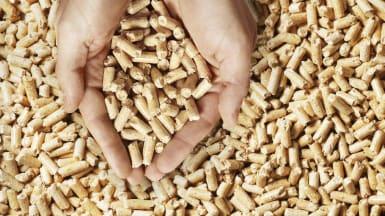 Två händer slår ihop och skopar upp pellets.