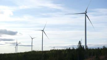 Distansbild på flera vindkraftverk.