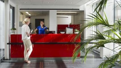 Bild på en reception där receptionisten och besökaren möts. Receptionistbordet är rött, medan det i bildens förgrund sticker ut en växt.