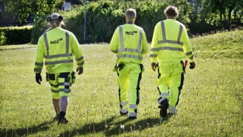Tre yrkesarbetare går på en gräsplätt.