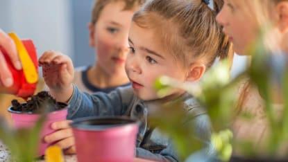 Bild på barn som leker och hanterar små barnvänliga plantor.