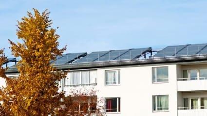 I bild syns solpaneler på lägenhetstak.