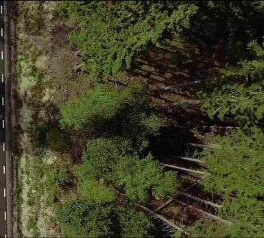 Uppifrån och ned-vy på en nyanlagd väg med en sjö åt vänster, och skog åt höger.