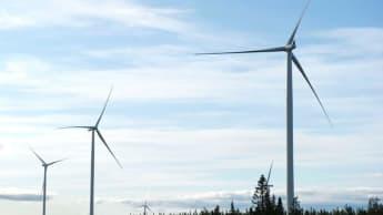 Wind turbines among a forest skyline.