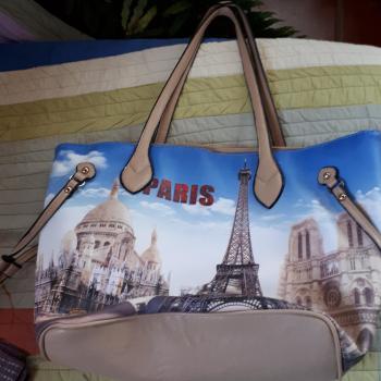 bolso dedicado a paris