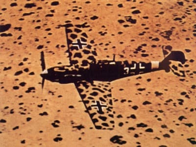 Aircraft Camouflage - © Attention Deficit Disorder Prosthetic Memory Program