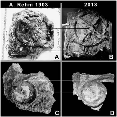 Antikythera Mechanism - © Attention Deficit Disorder Prosthetic Memory Program