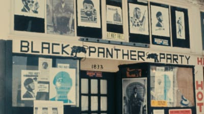 Black Panthers By Anges Varda - © Attention Deficit Disorder Prosthetic Memory Program