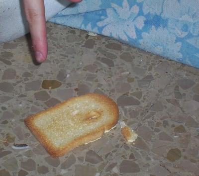 Buttered Toast Phenomenon - © Attention Deficit Disorder Prosthetic Memory Program