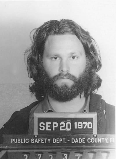 Celebrity Mugshots - © Attention Deficit Disorder Prosthetic Memory Program