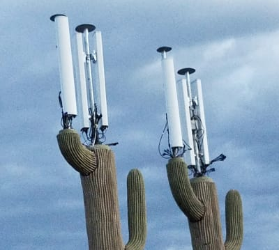 Camouflaged Cell Phone Towers - © Attention Deficit Disorder Prosthetic Memory Program