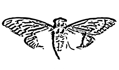 Cicada 3301 - © Attention Deficit Disorder Prosthetic Memory Program