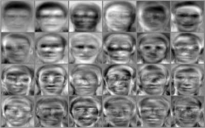 Eigenface - © Attention Deficit Disorder Prosthetic Memory Program
