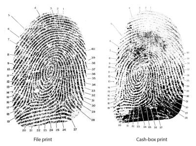 Fingerprint - © Attention Deficit Disorder Prosthetic Memory Program