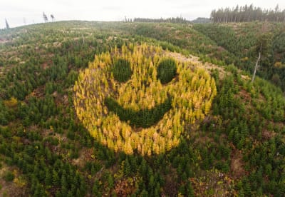 Oregon Highway 18 Smiley Face - © Attention Deficit Disorder Prosthetic Memory Program